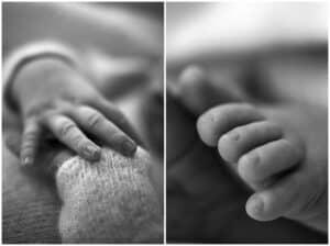 newborn photoshoot by cairns newborn photographer Lizzy Hannaford Photography